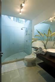 modern bathroom design with skylight above shower interior