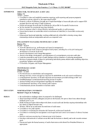 technology audit resume samples velvet jobs