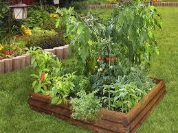 backyard veggie garden design small container vegetable gardening