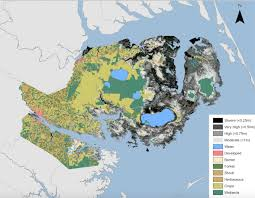 Map Of North Carolina Coast Ghost Forests Of The East Coast