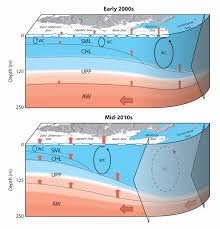 greater role for atlantic inflows on sea ice loss in the eurasian