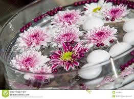 macro shot of flower table decorations royalty free stock photo