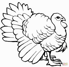 dazzling design turkey outline printable clip art map for coloring