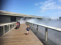 Sport Basement Presidio 40 Kid Friendly Events In San Francisco Not To Miss In June Hope