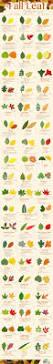 best 25 tree leaf identification ideas on pinterest
