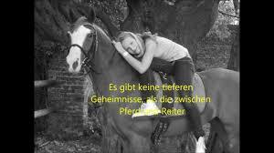 pferdesprüche meine lieblings pferdesprüche mit bildern