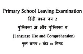 score well in hindi learn hindi with patient hindi teachers and