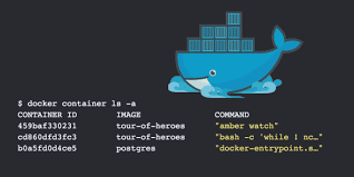 Amber Ls Meme - demystifying containers using crystal amber and docker