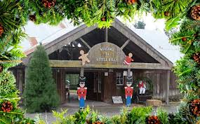 best u cut christmas tree farms in the bay area