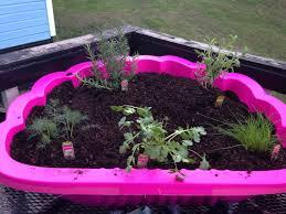 Diy Herb Garden Diy Herb Garden 2pc Clam Shell Kid Sand Box Drill Holes In
