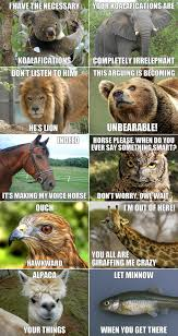 Funny Animals Meme - funny animals meme