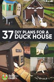 37 free diy duck house coop plans u0026 ideas that you can easily build