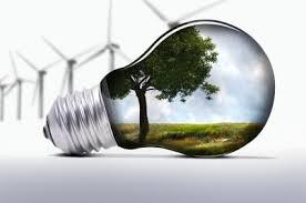 بهترین ایده های فضای سبز و طراحی فضای سبز(تصویری)