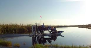 fan boat tours miami everglades tours sightseeing activities in florida