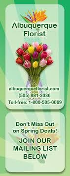 albuquerque florist albuquerque florist albuquerque new mexico