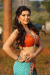 Search – Hansika-