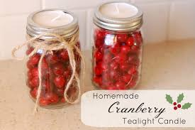 Homemade Plant Food by Homemade Cranberry Candles