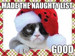 Naughty Funny Memes - made the naughty list funny christmas meme
