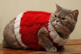 sweaters for cats cat vest cat clothes warm cat sweater knit