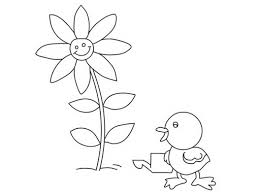 baby chicken cute animal coloring sheet for drawing and printing
