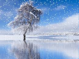 snow landscape free pictures on pixabay