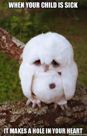 Sick Child Meme - when your child is sick it makes a hole in your heart sad owl