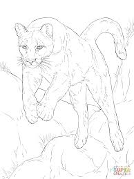 leaping cougar coloring page free printable coloring pages