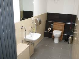 bathroom awesome bathroom accessories disability design ideas