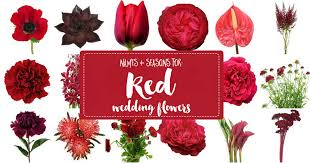 wedding flowers types names and types of wedding flowers with seasons pics