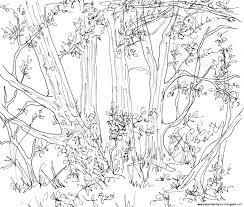 forest animals drawing wallpapers background