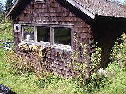 houses with cedar shakes great 19 cedar siding direct cedar wood