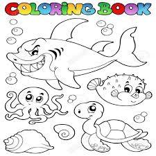imagenes animales acuaticos para colorear dibujos para colorear animales marinos diversos libros 1 colorear