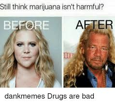 Drugs Are Bad Meme - still think marijuana isn t harmful before after dankmemes drugs