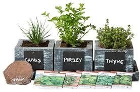 5 top kitchen herb garden indoor kits christmas gifts bliss
