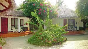 velidhu island resort facilities information about the velidhu
