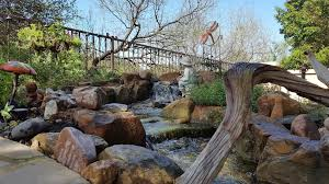 Waterfall In Backyard Texas Ponds And Water Features Austin Tx 512 782 8315 Backyard