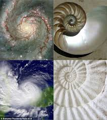 golden ratio dna spiral universe has a golden ratio that keeps everything in order