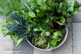 5 things to do in your vegetable garden in preparation for spring