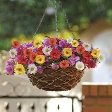 Diy Garden And Crafts - 333 best diy gardening images on pinterest garden ideas indian