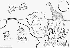 bible coloring book pages the story of creation great creation