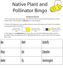 plants for native bees wildflower and pollingator lesson plan miami university