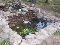 Backyard Fish Pond Ideas Download Coy Pond Designs Garden Design