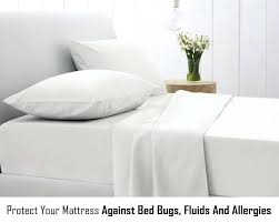 bed bug mattress cover target bed bug mattress protector permafresh set reviews allerease cover
