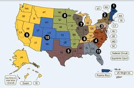 federal circuit court map copyright litigation federal circuit courts of appeal and