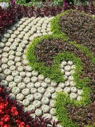 Succulent And Cacti Pictures Gallery Garden Design Classy Design How To Design A Succulent Garden Full Succulent