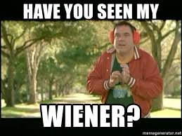 Mary Meme - have you seen my wiener warren there s something about mary