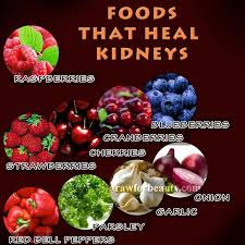225 best kidney stones images on pinterest health kidney stones