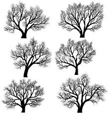 silhouettes of trees without leaves vector by vertyr image