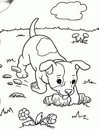 14 images coloring pages coloring