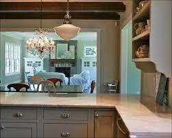 Light Grey Kitchen Cabinets Kitchen Grey And White Kitchen Designs Black And White Kitchen